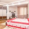 Apartament 1 odaie + living, Centru, Petru Rareș thumb 1